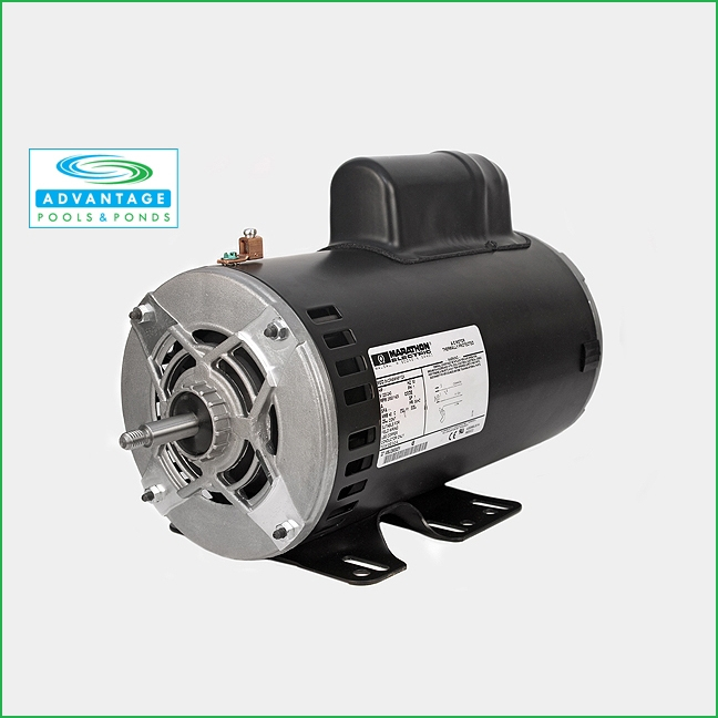 56 Frame Spa Motor 2 Speed 230 Volts Only Available In 1