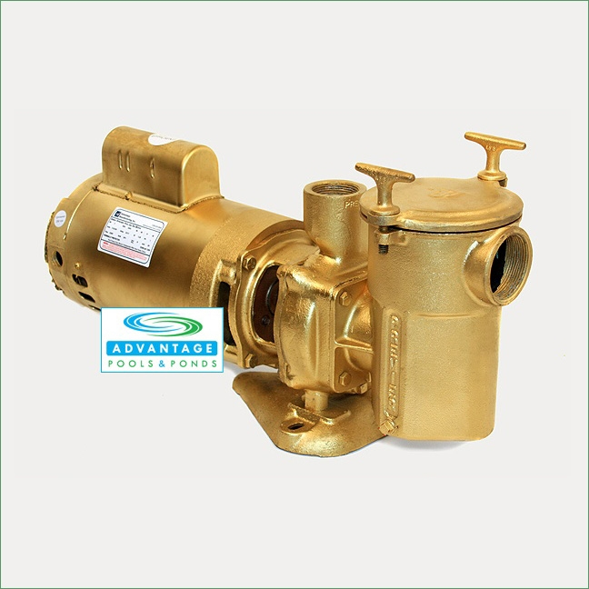 Commercial duty bronze single speed 115 230 volts in for Inground pool pump and filter systems